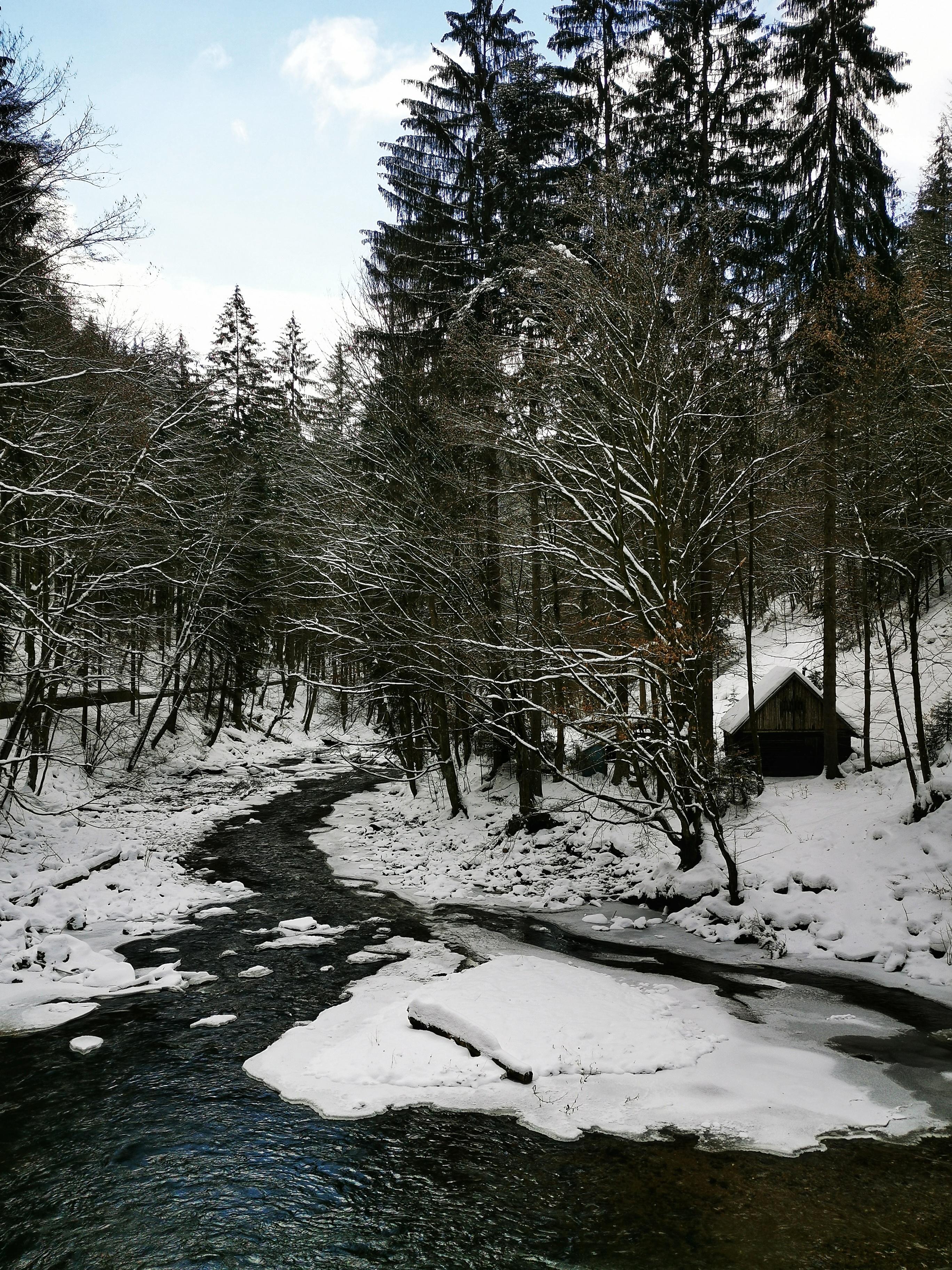 Kamenice river, Czech Republic