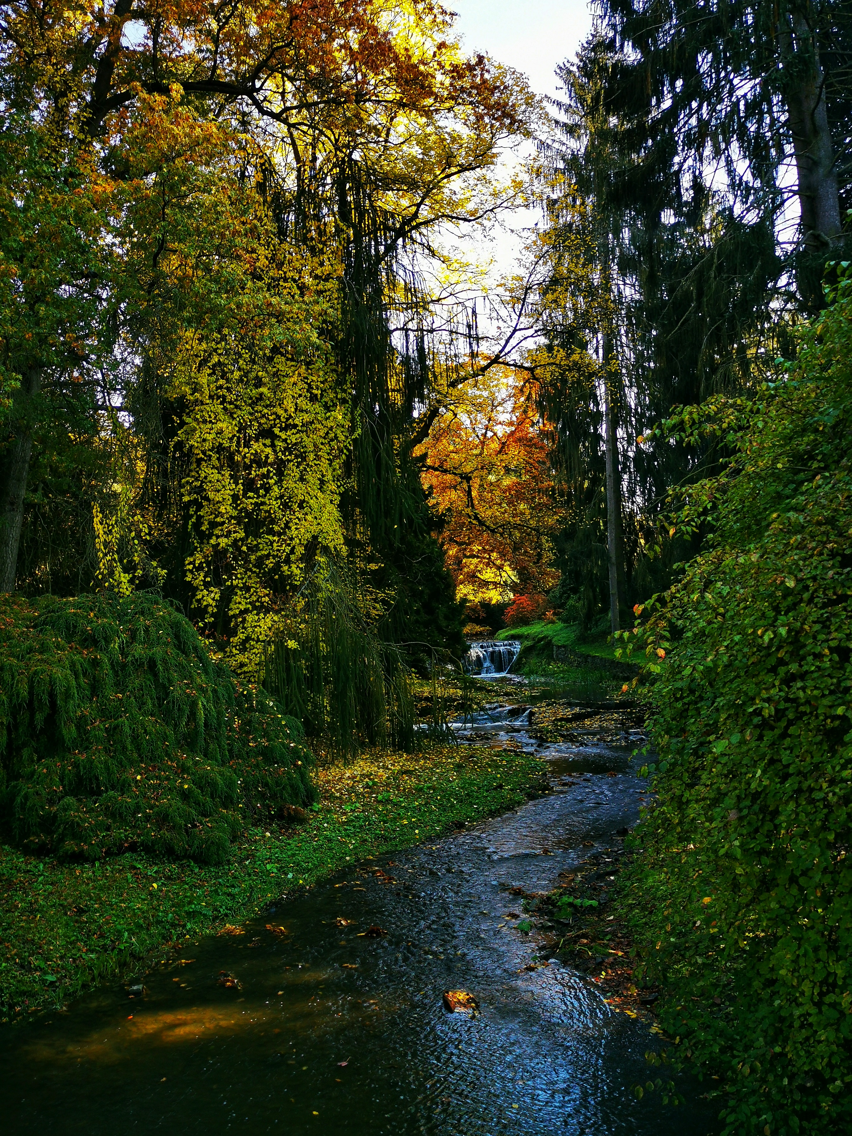 The Průhonice Park is the most significant landscape element southeast of Prague and an important haven for the variety of organisms in this part of the country.